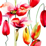 Seamless wallpaper with Poppy and Tulips flowers Stock Image
