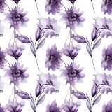 Seamless wallpaper with romantic flowers. Watercolor illustration Stock Photos