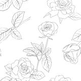 Seamless wallpaper with rose flowers Royalty Free Stock Photos