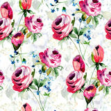 Seamless wallpaper with Roses flowers Royalty Free Stock Photography