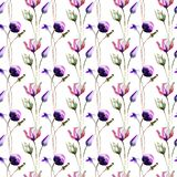 Seamless wallpaper with Spring wild flowers Stock Photography