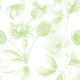 Seamless wallpaper with Spring wild flowers Royalty Free Stock Images