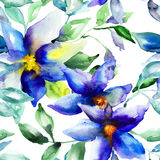Seamless wallpaper with Summer flower. Watercolor illustration Royalty Free Stock Image