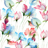 Seamless wallpaper with Sweet pea flowers. Watercolor illustration Royalty Free Stock Photography