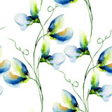 Seamless wallpaper with Sweet pea flowers Royalty Free Stock Photos