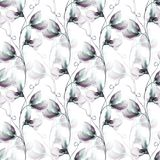 Seamless wallpaper with Sweet pea flowers. Watercolor illustration Stock Image