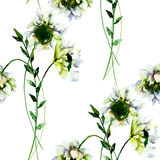 Seamless wallpaper with White Gerber flowers Royalty Free Stock Photography