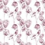 Seamless wallpaper with wild flowers. Watercolor illustration Stock Image