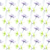 Seamless wallpaper with wild flowers. Watercolor illustration Stock Photos