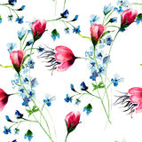 Seamless wallpaper with wild flowers Royalty Free Stock Image