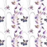 Seamless wallpaper with wild flowers. Watercolor illustration Stock Photography