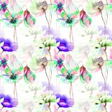 Seamless wallpaper with wild flowers. Watercolor illustration Royalty Free Stock Photos