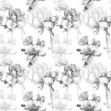 Seamless wallpaper with wild flowers. Watercolor illustration Stock Images