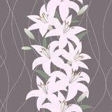 Seamless Wallpaper With Lily Flowers Stock Photos