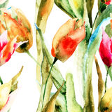 Seamless wallpapers with Tulips flowers. Watercolor illustration Stock Photography