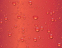 Seamless water drop texture Stock Images