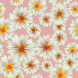 Seamless water Lily patten Stock Images