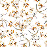 Seamless watercolor background consisting of dried flowers stock illustration