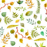 Seamless watercolor background with different leaves Royalty Free Stock Photos