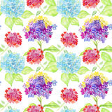 Seamless watercolor background. hydrangea, floral pattern. Stock Photos