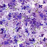 Seamless watercolor background lilac flowers Stock Photography