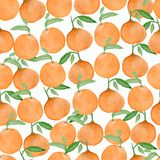 Seamless watercolor background with oranges and tangerines, hand watercolor illustration stock illustration