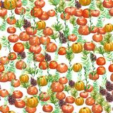 Seamless watercolor background with oranges and tangerines, watercolor illustration. royalty free stock photo
