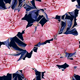 Seamless watercolor background with pink peonies Stock Image