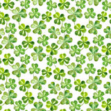 Seamless watercolor background with trefoil clover leaves for Patrick day Stock Photos