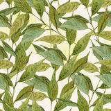 Seamless Watercolor Background with Twigs, Leaves Royalty Free Stock Image