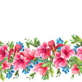 Seamless Watercolor Border with Tropical Flowers Royalty Free Stock Image