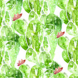 Seamless watercolor cactus pattern, vector Stock Image