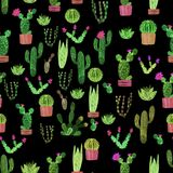 Seamless watercolor cactuses plant pattern Stock Photo