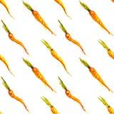 Seamless watercolor carrots vector background Stock Photos