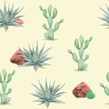 Seamless watercolor desert pattern with cactus agave, rock, grass, bush. On yellow background Stock Photography