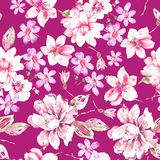 Seamless watercolor flower pattern ON PINK royalty free stock image