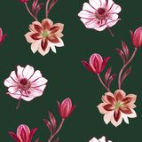 Seamless watercolor flowers pattern. Hand painted flowers on a white background. Flowers for design. Ornament flowers. Seamless bo vector illustration