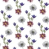 Seamless watercolor flowers pattern. Hand painted flowers on a white background. Hand painted flowers of different colors. Flowers royalty free illustration