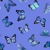 Seamless watercolor flying butterflies pattern Royalty Free Stock Image