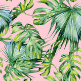 Seamless watercolor illustration of tropical leaves, dense jungle. Stock Photography