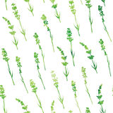 Seamless watercolor lavender pattern Stock Images