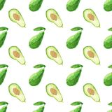Seamless watercolor pattern with avocado on the. White background, aquarelle.  Vector illustration. Hand-drawn background. Original vegetable background. Useful Royalty Free Stock Photography