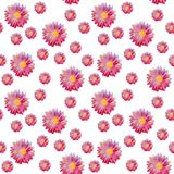 Seamless watercolor pattern with beautiful aster flowers. Stock Photography