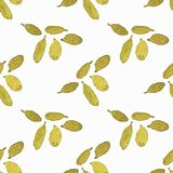 Seamless watercolor pattern with cardamom on the Royalty Free Stock Photos