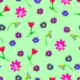 Seamless watercolor pattern. Colourful eggs and flowerson green background. Stock Image