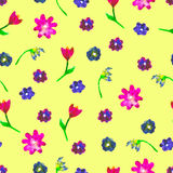 Seamless watercolor pattern. Colourful flowers on yellow background. Bright hand drawn illustration. Happy Easter template. Royalty Free Stock Image