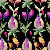 Seamless watercolor pattern consists of flowers and berries on a black background Stock Photography