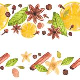 Seamless watercolor pattern with different spices. On the white background, aquarelle.  Vector illustration. Hand-drawn background Royalty Free Stock Photo