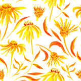 Seamless watercolor pattern with flowers. Background with yellow and orange flowers and leaves for design Stock Image