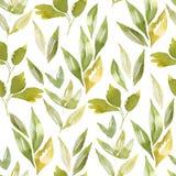 Seamless watercolor pattern vector illustration
